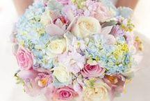 Pastel Wedding Flowers  / Pastel Wedding Flowers