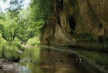 Natural Iowa Travel / Places to go, things to do to appreciate Iowa's outdoors, whether it's a one-day getaway, a weekend road trip or a week-long vacation. / by Iowa Dept of Natural Resources