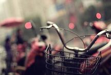 Bicicletta / by Catalina Yávar