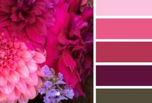 C O L O R / Color is the first thing people gravitate to when they notice your brand. Pick your color wisely.