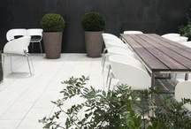 || GARDEN |  DETAILING / by The Paper Mulberry