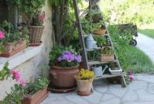 In the Garden / Ideas inspiration for the garden
