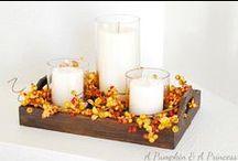 Thanksgiving / by Valerie Longey