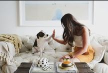 Doggie Photog / Pup picture inspiration