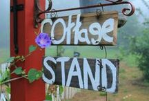 Our Farm Stand at Red Dirt Farm / Cottage Roadside Stand sells fresh and organic eggs and flowers.  Here we share photos from the stand.