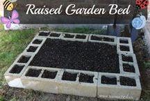 Non Aquaponic Gardening / Traditional Soil Based Gardening / by Aquaponics Texas