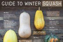 Squash / Recipes and more using different types of squash. Butternut Squash, Spaghetti Squash, Winter Squash, Delicata Squash, Acorn Squash, Pumpkin, Kobacha Squash. #Squash