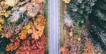 ALL ABOUT AUTUMN