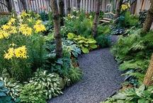 Gardens / by Cathy Zorilo
