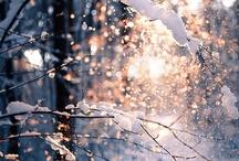 December by Mar