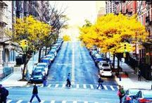 beautiful New York  / by Audrey Curran