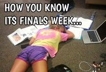 """Finals Week / """"May the curve be ever in your favor!"""""""