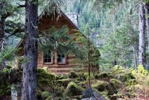 Tiny Houses / Tiny Houses & Cabins! / by MsAbigail