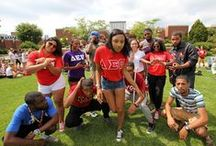 Greek Life / by Bloomsburg University
