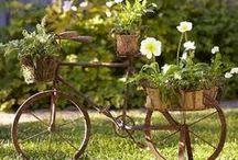 Jardins & Eco-idéias
