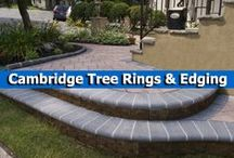 Cambridge Tree Rings and Edging / Complete your pavingstone patio, driveway, pool, or garden bed with edgestone, curbstone, and bullnose from from Cambridge Pavingstones with Armortec.  / by Cambridge Pavingstones with ArmorTec