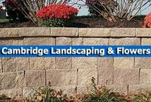 Cambridge Landscaping & Flowers / Create beautiful greenery that will perfectly complement your outdoor spaces with these planting tips and landscaping design ideas. / by Cambridge Pavingstones with ArmorTec
