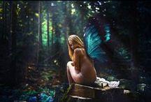 -✲- • Fairytales • -✲-