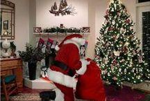 Christmas time is near! / by Morgan Knauss