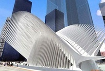 Santiago Calatrava.Master of Form. / Santiago Calatrava is not only one of the world's most prominent architects but also an engineer and  an artist. Already well-known in Europe for his unique design aesthetic, Calatrava is beginning to make a name for himself in the United States. Starting with the Milwaukee Art Museum, he has designed a number of public buildings and bridges. Calatrava is one of the greatest and most innovative architects alive. This is a tribute to his greatest art. It is also a special project.