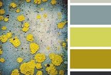 color & pattern / by Jody Deschenes