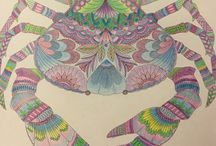 Adult colouring pages / Interesting colouring pages