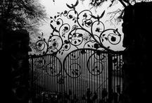 secret garden / dreamy gardens