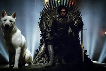 Game of Thrones / by assa T.