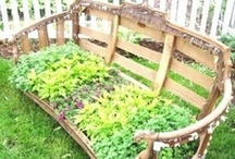 Ideas for Our Patio Garden / by Melrose Trading Post
