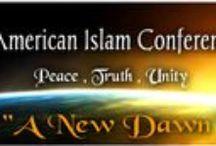 American Islam Conference 2014