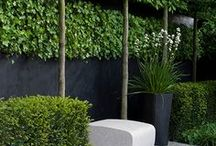 Landscaping Ideas / by Bonita ~~~