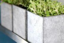 Gardening / gardening, vegetable garden, gardening tips, garden decor, garden diy