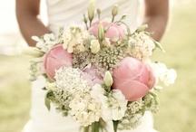 Wedding Ideas / by Lisa Miller