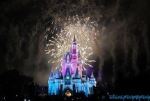 Disney - Magic Kingdom / Welcome to the Magic Kingdom - please enjoy your stay.  Walt Disney World.  Food, Attractions, Tips and Tricks.