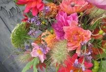 Seasonal Summer Flowers / Inspiration for seasonal summer wedding flowers - June, July, August