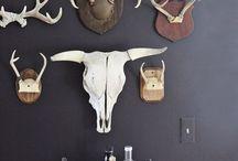 Gallery wall/Wall Decor / by Carla Pumar