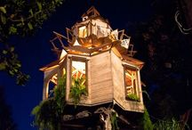 Treehouse Love / by Erika Sherman