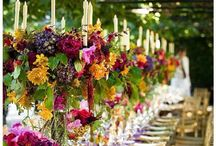 Special Events / by Kathy Scheenstra