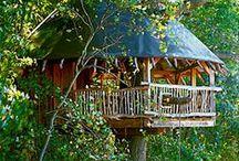 maisons dans les arbres  / by Baba Cool