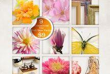 BooLand Designs Super Deals / Short Term Super Deals.  Be sure to check the date