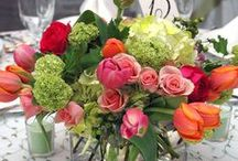 Wedding Centrepieces / Beautiful centrepieces for your wedding tables.  / by Phoenix Wedding Gardens