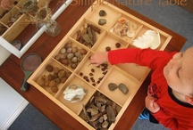 The Reggio Classroom / by Brandi Davis