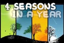 Ed/songs/seasons / by Toni Martin