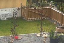 Hage / Hage garden