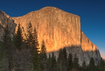 Yosemite / by Carol Cutter