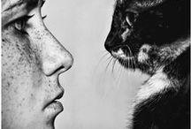 kit-kitty kats