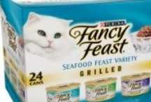 Cat Food.  / 