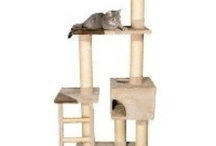 Cat Activity Trees. / 