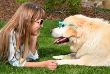EasyTurf: Backyard Pet Design / EasyTurf LOVES Pets! EasyTurf artificial grass for dogs, with its revolutionary drainage capabilities, along with its realistic look and feel, make it the number one choice for pet owners.