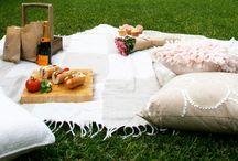 Summer / Summer decor ideas and summer life!